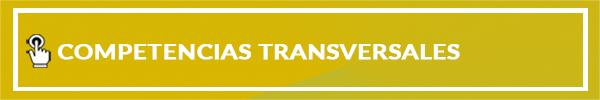 04-COMPETENCIAS-TRANSVERSALES