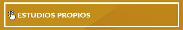 03-PROPUESTA-DE-ESTUDIOS-PROPIOS